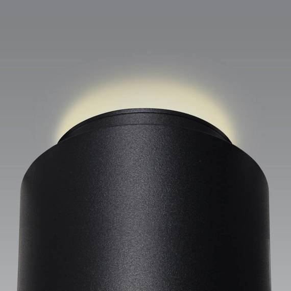 Spot Berella Light Cori BK/GD BL2024 Czarno złoty